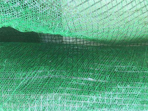 山东护坡三维植被网如何正确施工?泰安诺联植被网多少钱一平方*