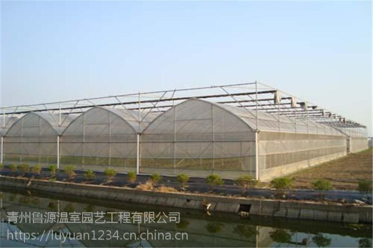 四川凉山简易薄膜大棚单体1000平米温室大棚设计施工厂家预算