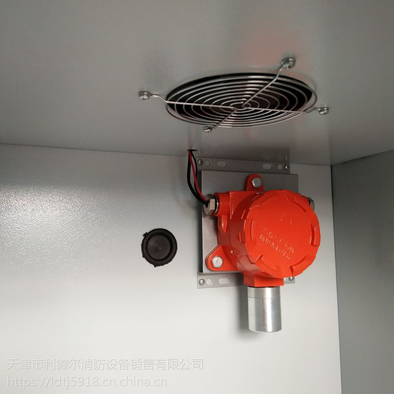 全钢气瓶柜 实验室钢制气瓶安全柜 灰白色气体储存柜 LQ-010B
