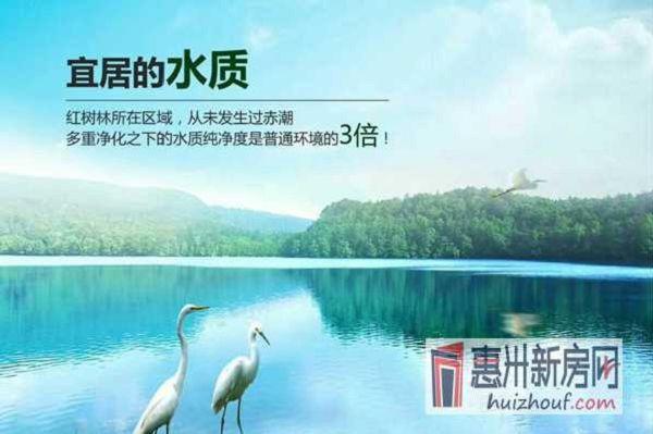 http://himg.china.cn/0/4_755_1056685_600_399.jpg