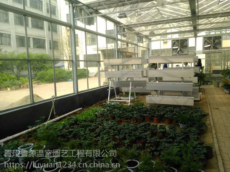 山西永济阳光板温室大棚1万平太阳能发电建设厂家施工设计