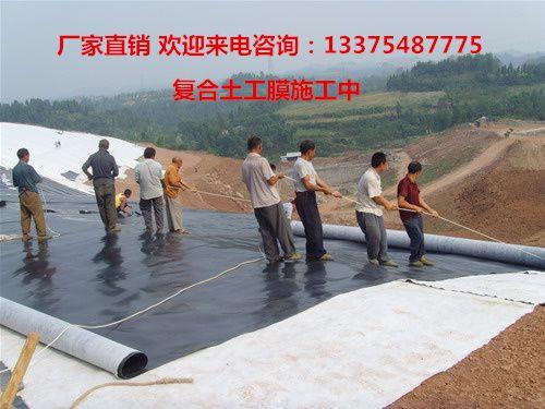 http://himg.china.cn/0/4_758_237936_500_375.jpg