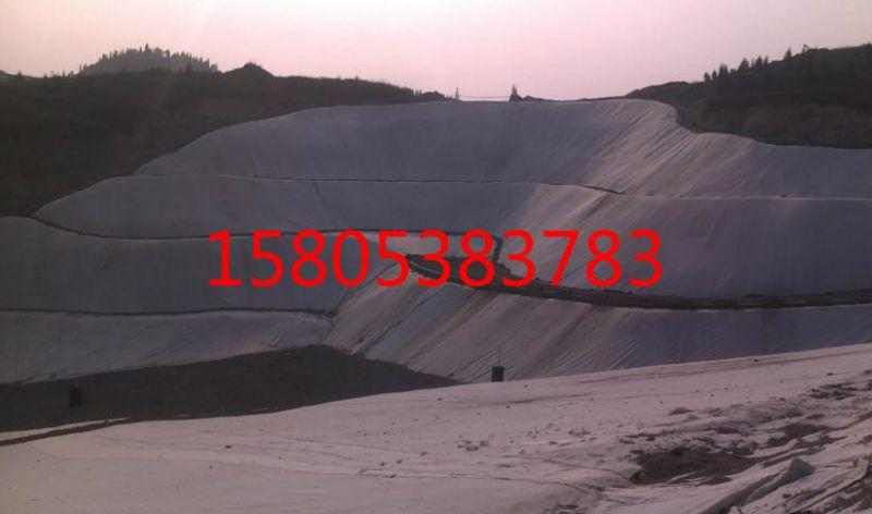 http://himg.china.cn/0/4_75_237976_800_472.jpg