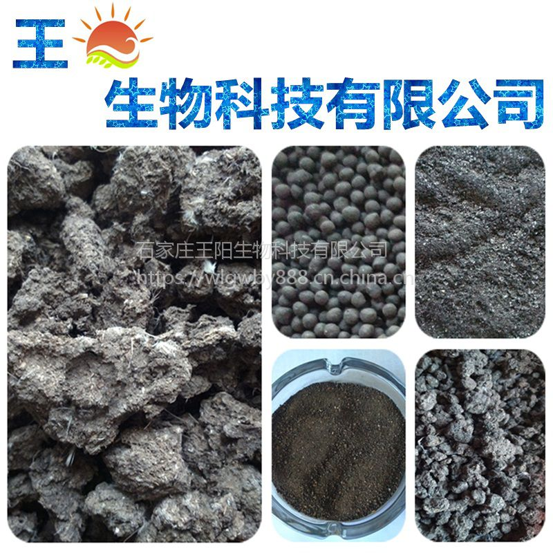 直销北京鸡粪有机肥料 天然晒干鸟粪块 鸟粪 仙人掌与多浆植物专用