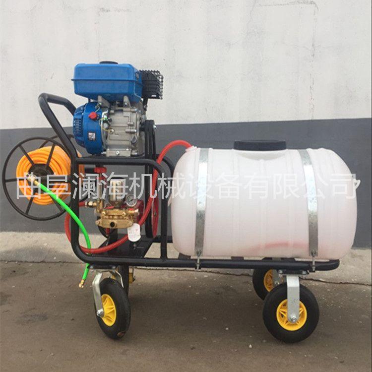 农用小型汽油喷雾器 大功率优质喷雾器型号