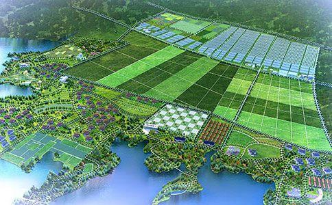 http://himg.china.cn/0/4_763_235250_484_300.jpg