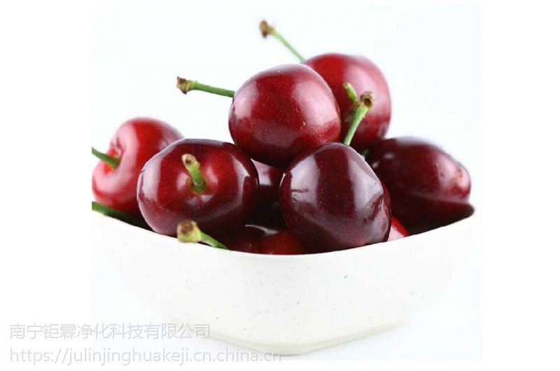 广东消毒剂在果蔬保鲜中的重要作用