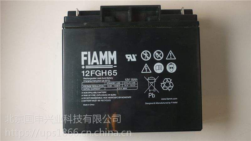 FIAMM非凡蓄电池FG20451/12V4.5AH