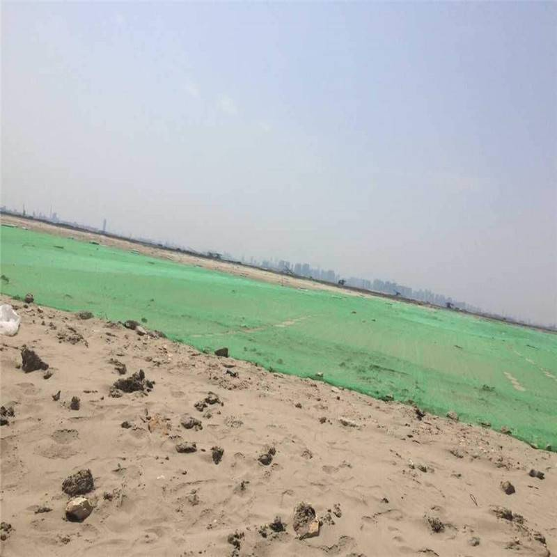 裸土地面盖土网 环保用防尘网 城市绿化防尘网