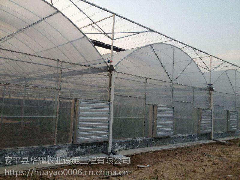 塑料大棚-作用-结构特点-形式多样-专业设计安装-河北安平