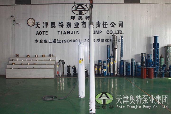 天津津奥特可以用多种材质多种制造工艺的潜水电机很不错