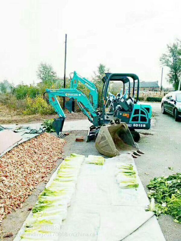 【农田菜园】便宜的微型挖掘机