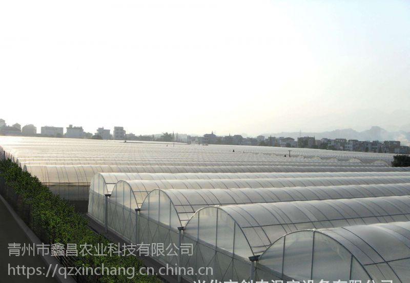 湖南株洲连栋生态采摘园大棚温室15丝po膜外覆盖型建造公司