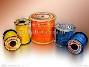 供应齐鲁牌铜芯聚乙烯绝缘聚乙烯多芯齐鲁电缆 VVR-0.6/1kv 3*70