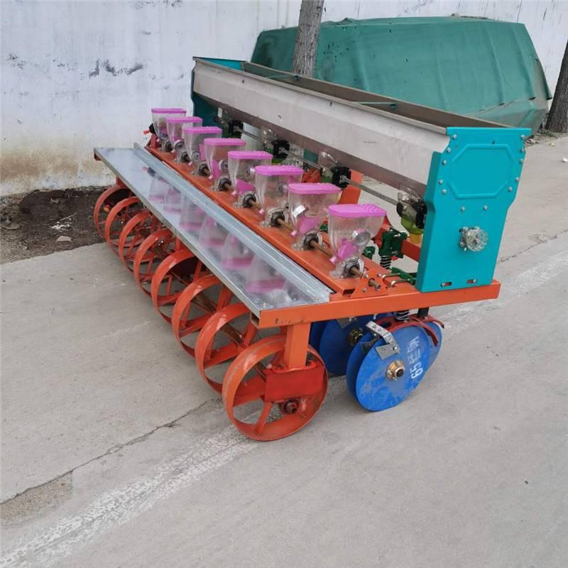 多行谷子精播机 启航牌桔梗种植精播机 六行蔬菜小颗粒种植机价格