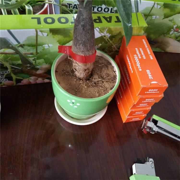 黄瓜葡萄绑藤绑扎机 黑皮冬瓜专业绑枝机