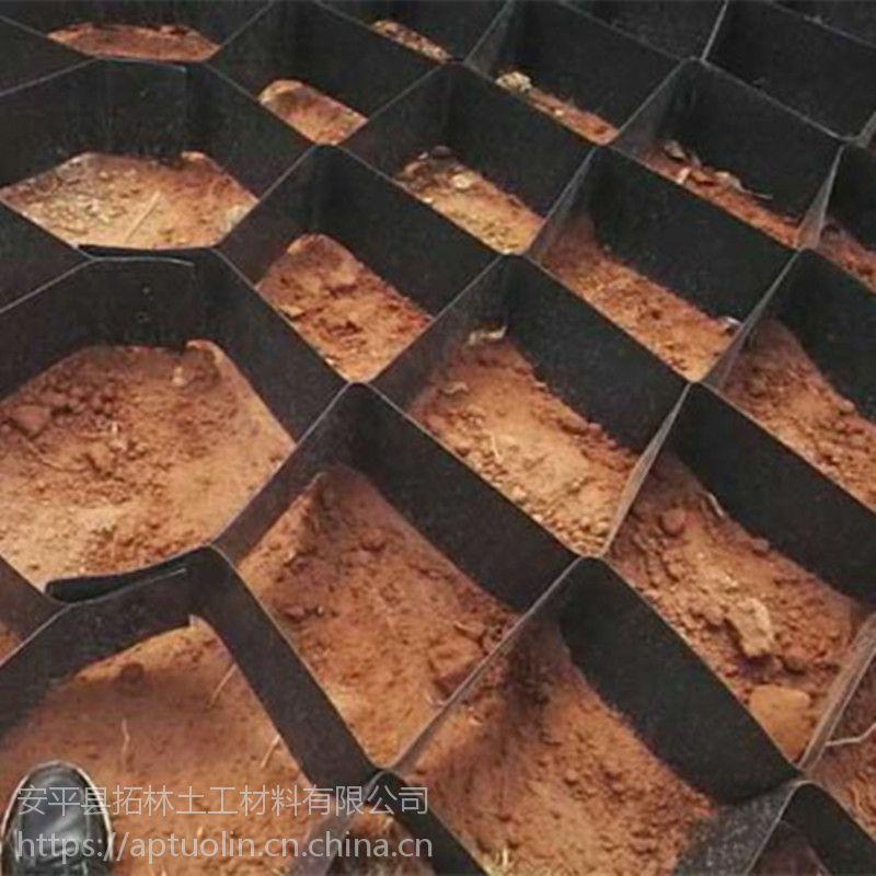 蜂巢格网绿化护坡 土工格室厂家 蜂巢滤水土工格室