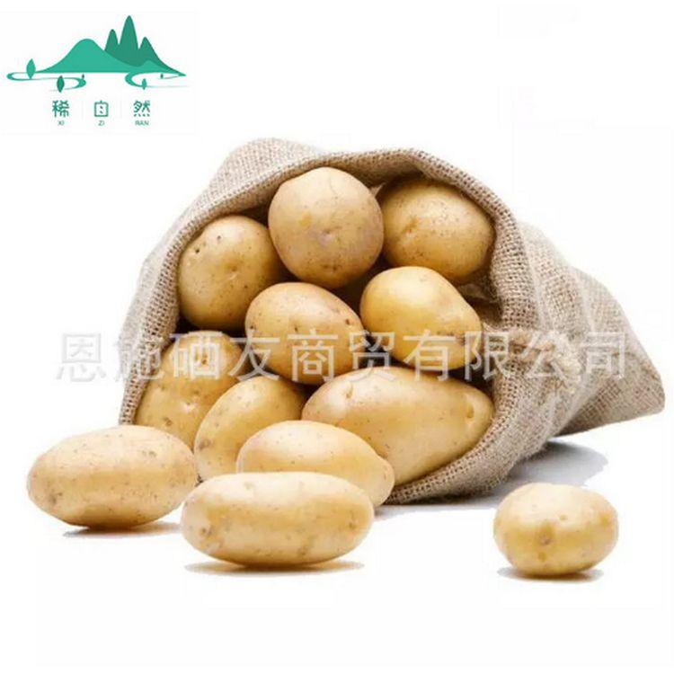 恩施特产 原生态蔬菜 富硒土豆 马铃薯土豆批发 一件代发