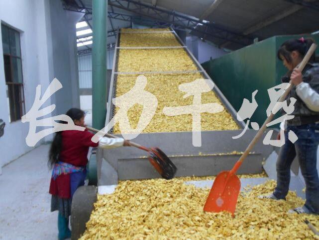 专业的土豆片专用烘干机|干燥机厂家