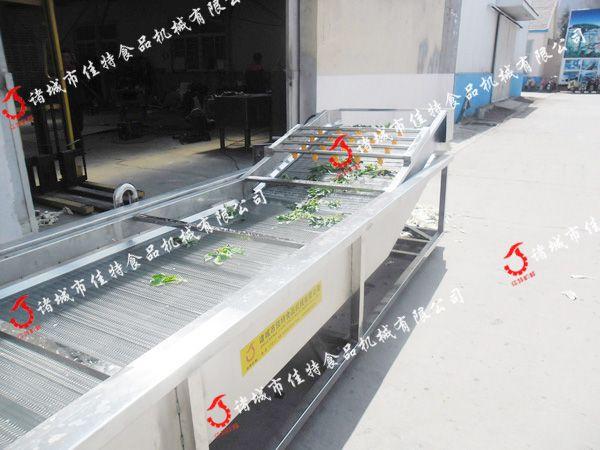 青海果蔬去杂清洗机 厂家直销果蔬清洗机
