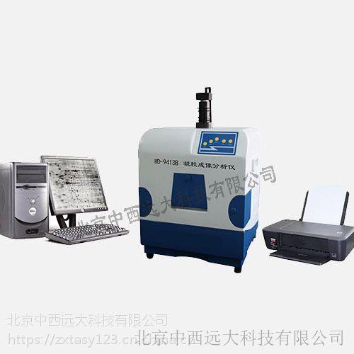 中西凝胶成像分析系统 型号:BL61-WD-9413B库号:M143697
