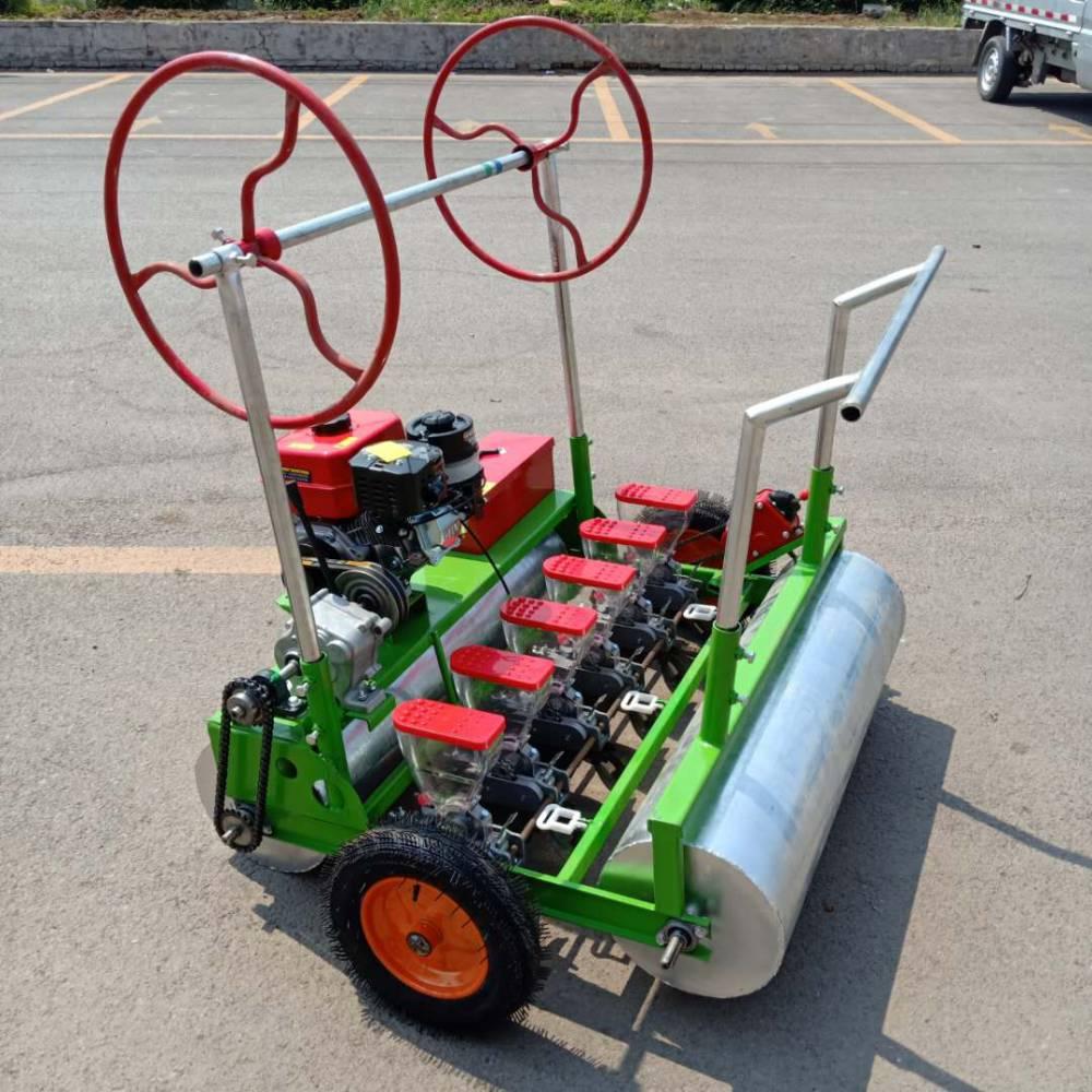 莴苣专用播种机 免间苗药材播种机 手推式蔬菜精播机