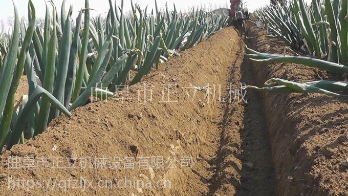 小型轻便家用开沟培土机 大棚蔬菜松土起垄机 大葱开沟封葱机