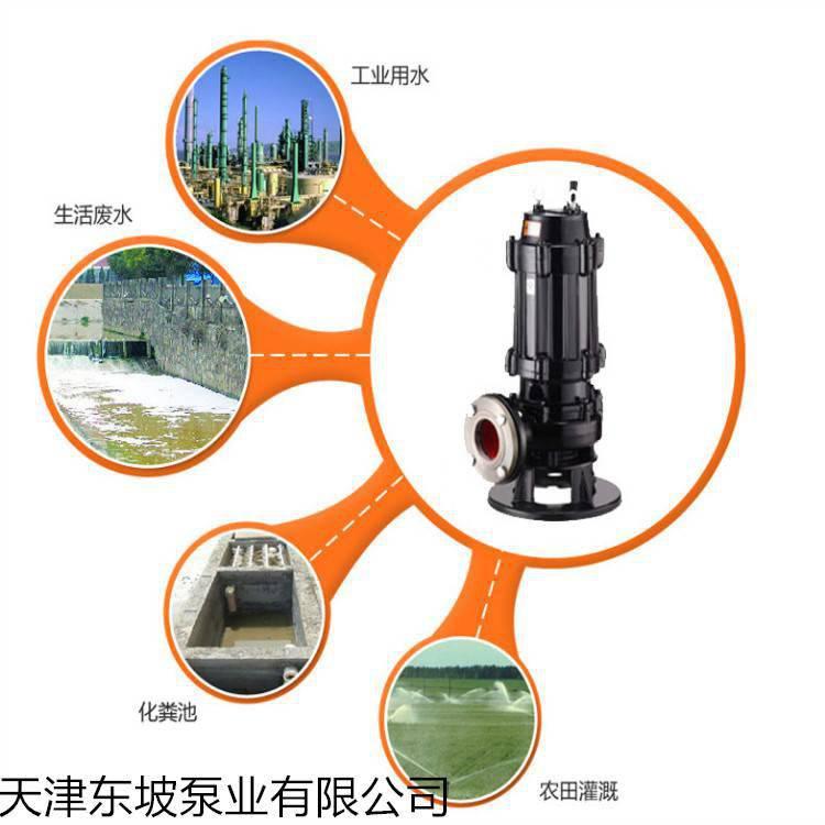 天津无堵塞污水泵选型-东坡无堵塞排污泵厂家