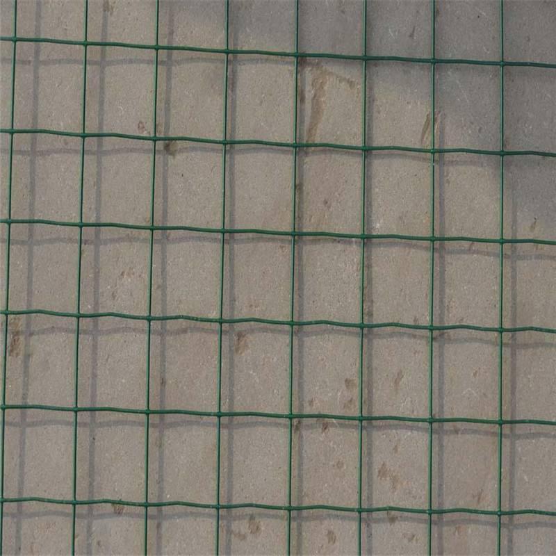 绿色山鸡网 养殖铁丝网 浸塑荷兰网厂家