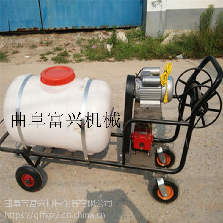 多种容量汽油打药机 富兴手推茶园驱虫喷药机 医院消毒喷雾器价格