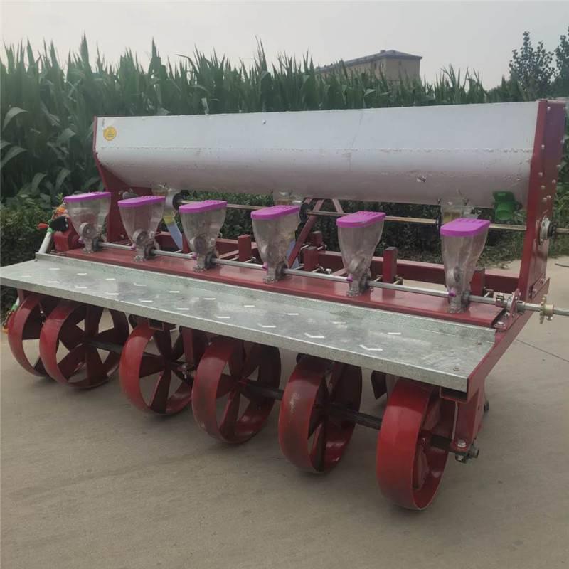 苜蓿草种子播种机 芝麻高粱播种机 蔬菜株距可调精播机