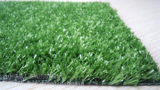 为什么人造草坪那么受欢迎,仿真草坪的优势,人工草皮价格