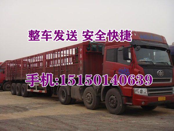 http://himg.china.cn/0/4_802_241316_600_450.jpg