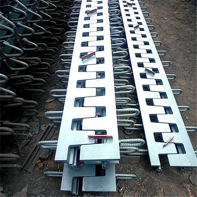 株洲市 单组式桥梁伸缩缝 陆韵 伸缩缝 系统检测