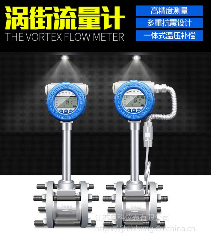 蒸汽流量计,AK-LUGB蒸汽流量计DN100