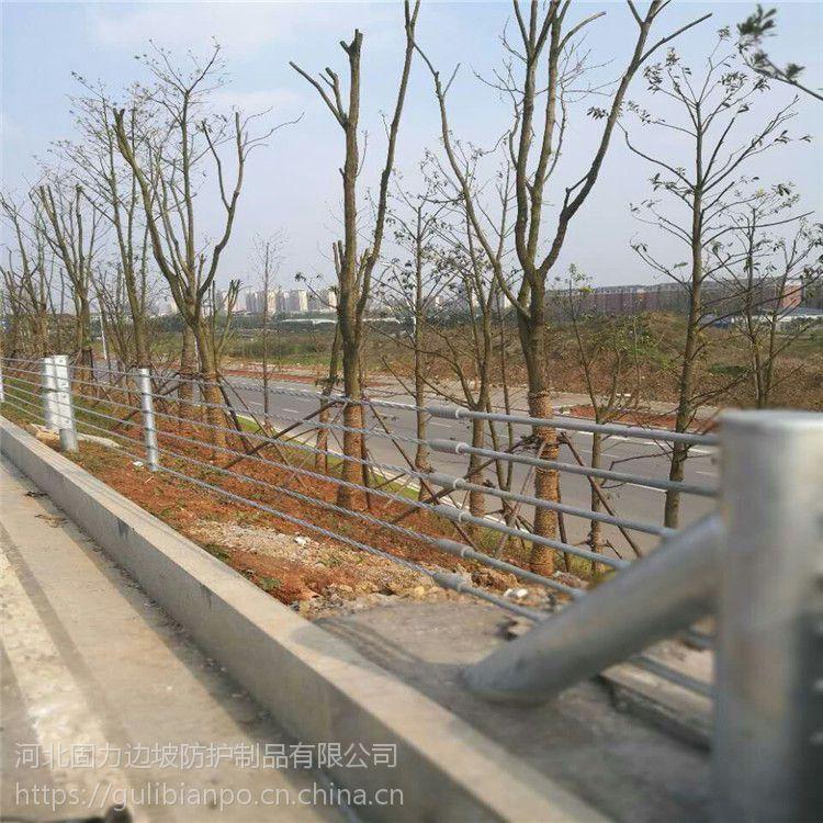 河北固力厂家定做缆索护栏@柔性防撞栏@钢丝绳