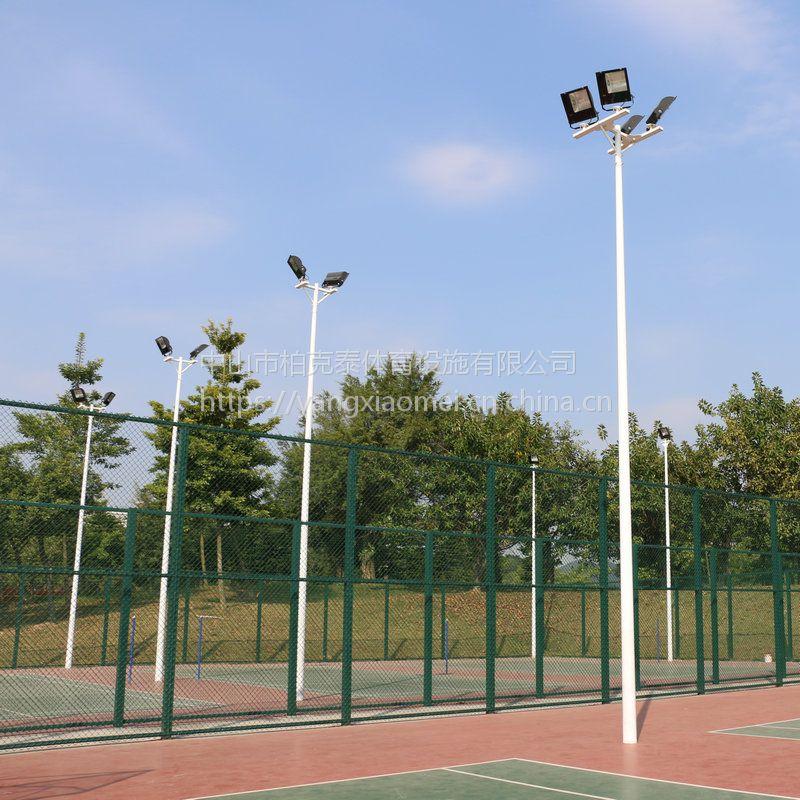 校园篮球场一拖二照明灯杆 湛江小区公园灯具安装 柏克照明效果