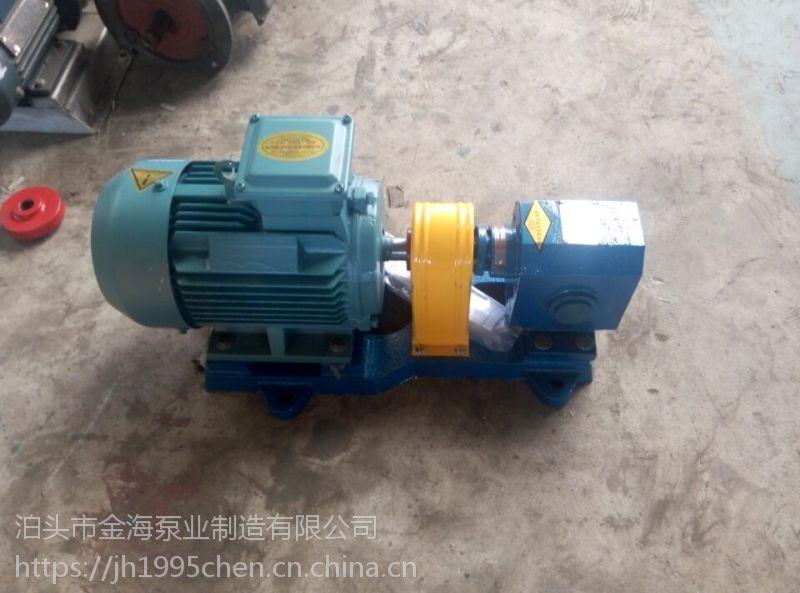 泊头金海批量供应 2CY齿轮泵 抽油泵 皂液泵 传输 增压泵