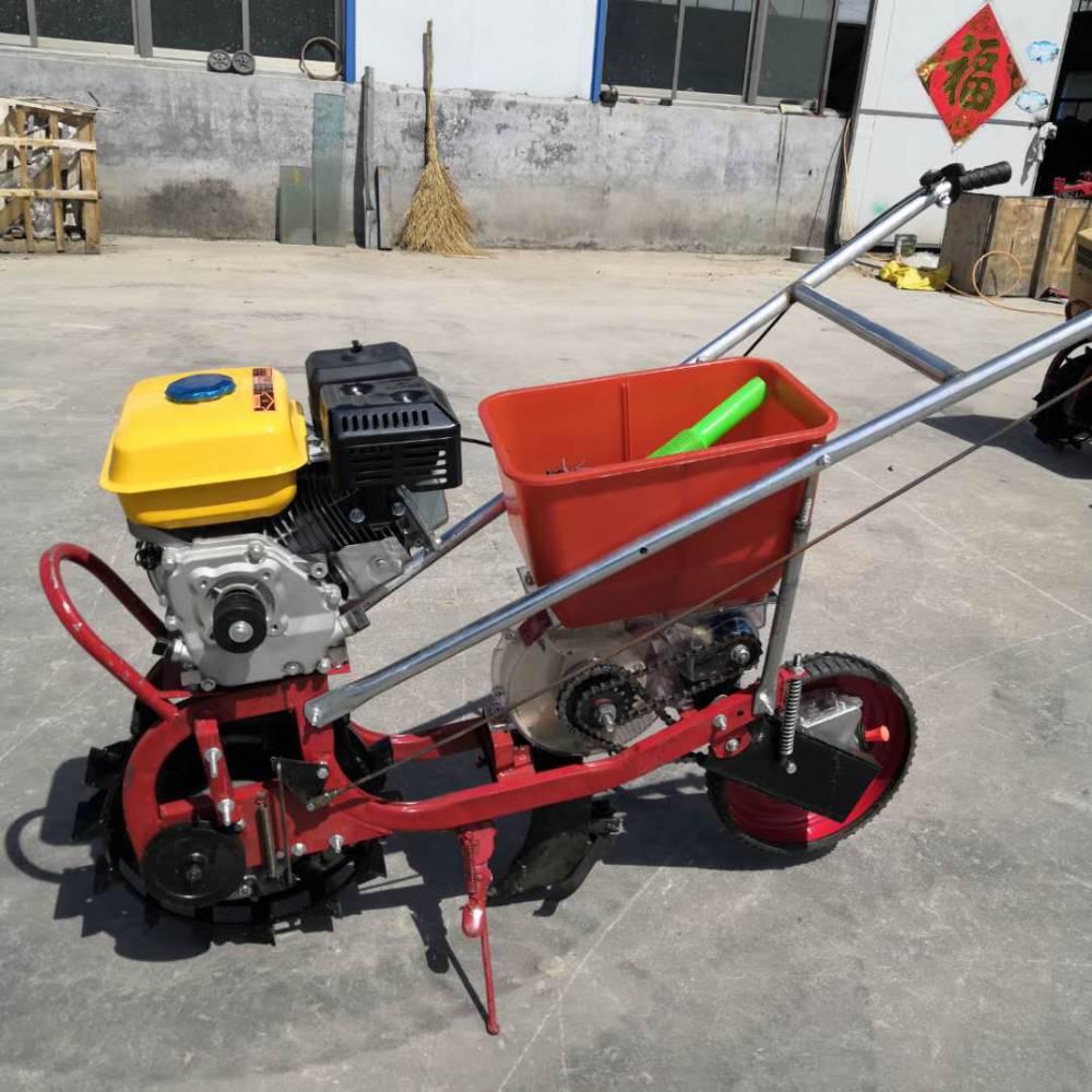单人操作汽油播种机 玉米粒播种机图片 富民牌