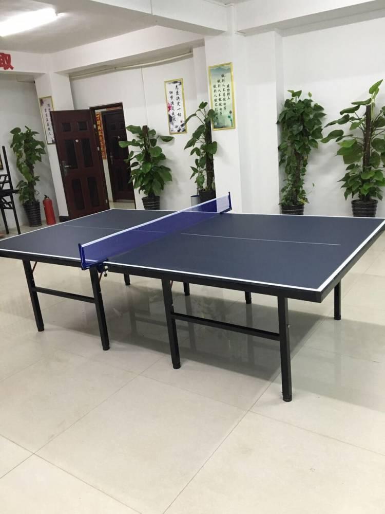 广西乒乓球台哪里有卖,乒乓球台生产厂家