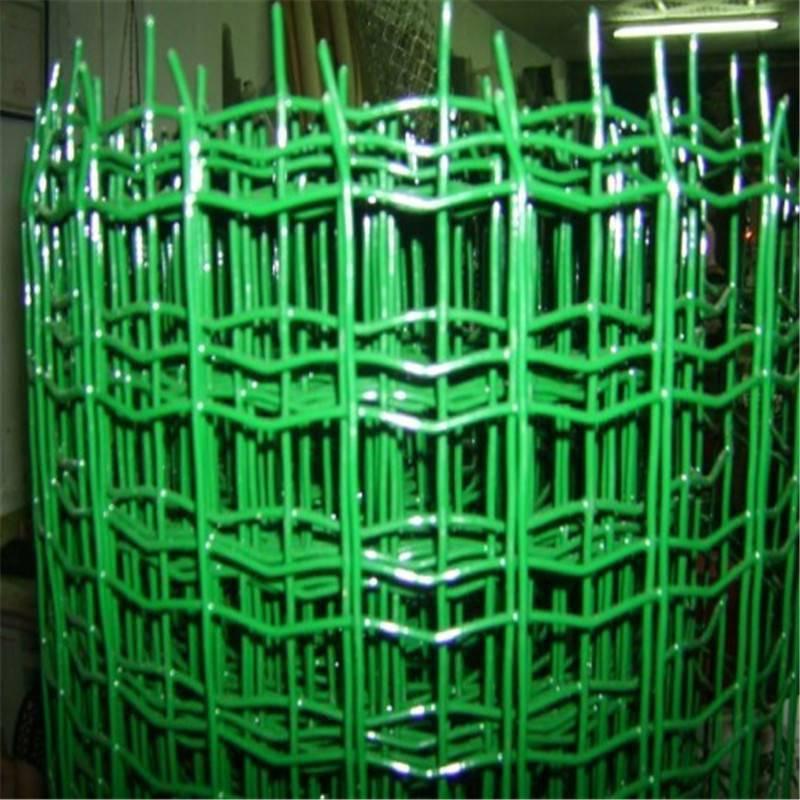 养殖荷兰网厂家 铁丝荷兰网 养鸡围栏多高