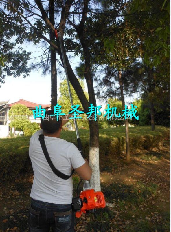 公路绿化树木修剪高枝锯 汽油高枝锯