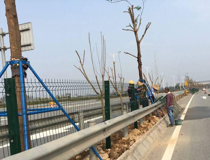 珠海铁丝隔离网现货 清远边框防护围栏价格 广州公路边护栏