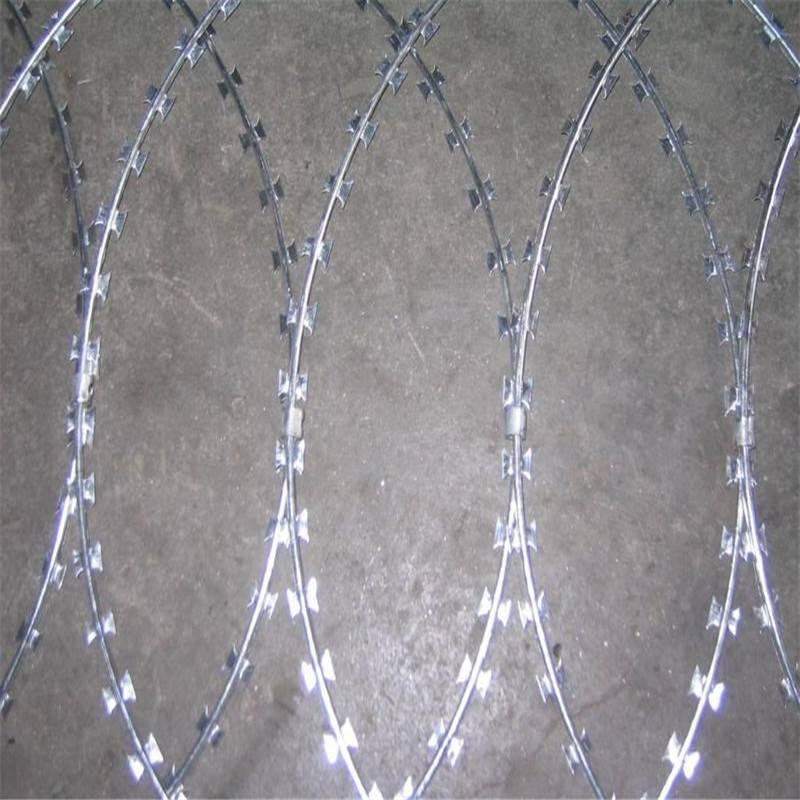 刀片防护网价格 刀片刺绳网 刺丝报价