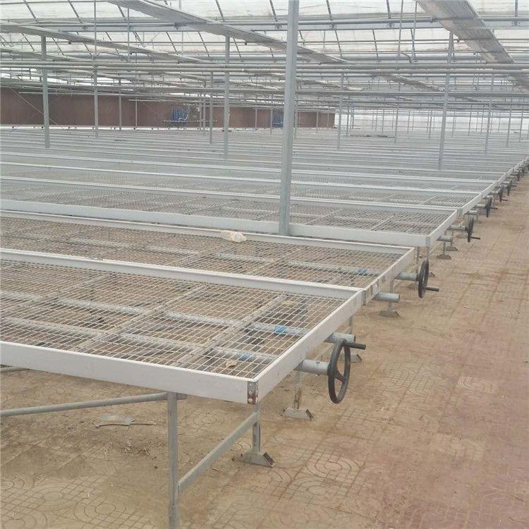移动苗床网 温室花架网 出售苗床 苗床厂家价格行情