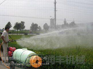 花苗圃喷雾器 蔬菜基地喷雾器 果园自动化打药机 批发直销