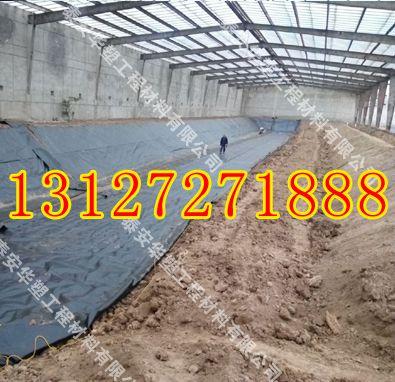 http://himg.china.cn/0/4_825_239542_395_382.jpg