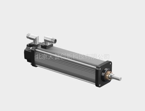 Exlar 微型伺服电动缸GSX系列