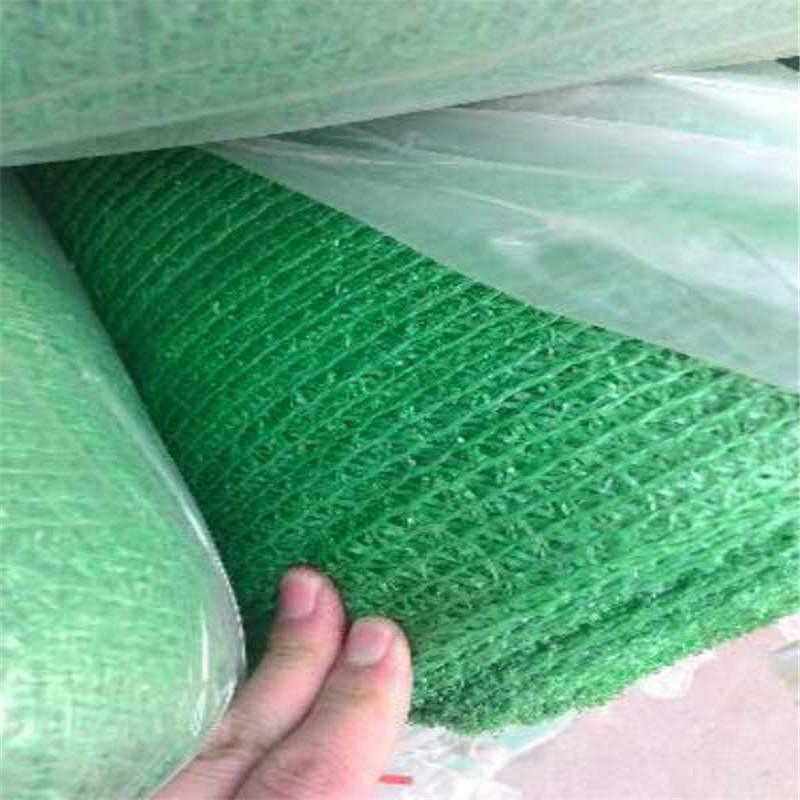 盖土网 正品防尘网 防尘绿网厂家