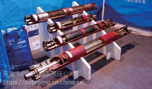 实力制造品质技术要求高的不锈钢潜油电泵帮你选择合适的泵型哦